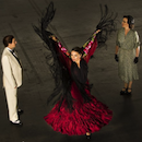 Come for the Music, Stay for the Flamenco