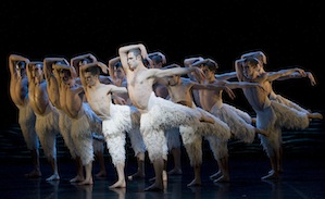 Richard Winsor and the swans of Matthew Bourne